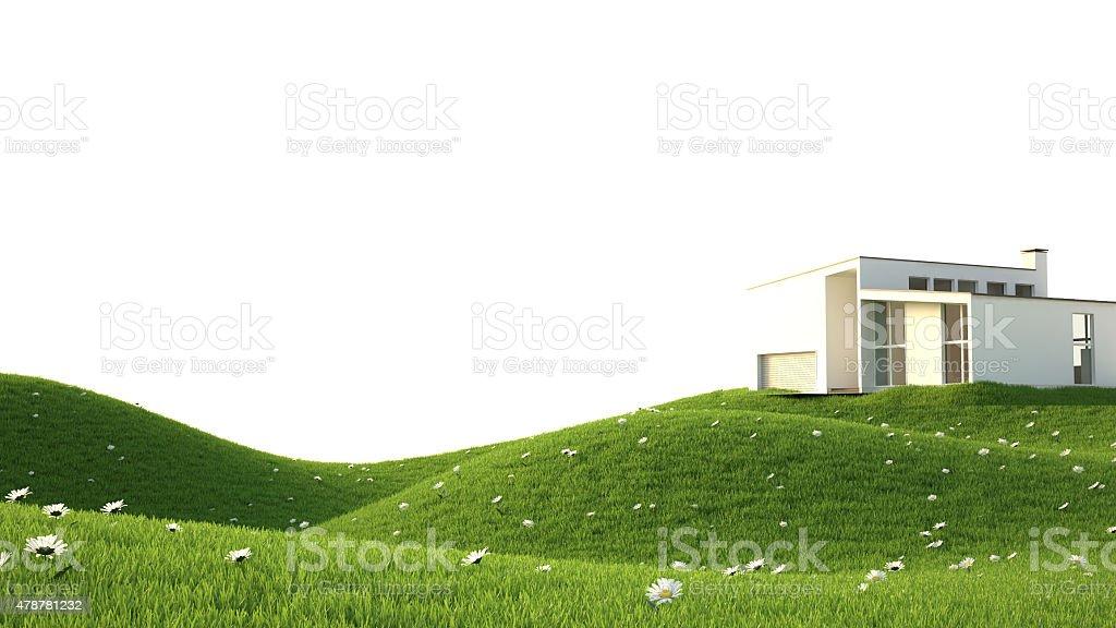 Vert grass field photo libre de droits