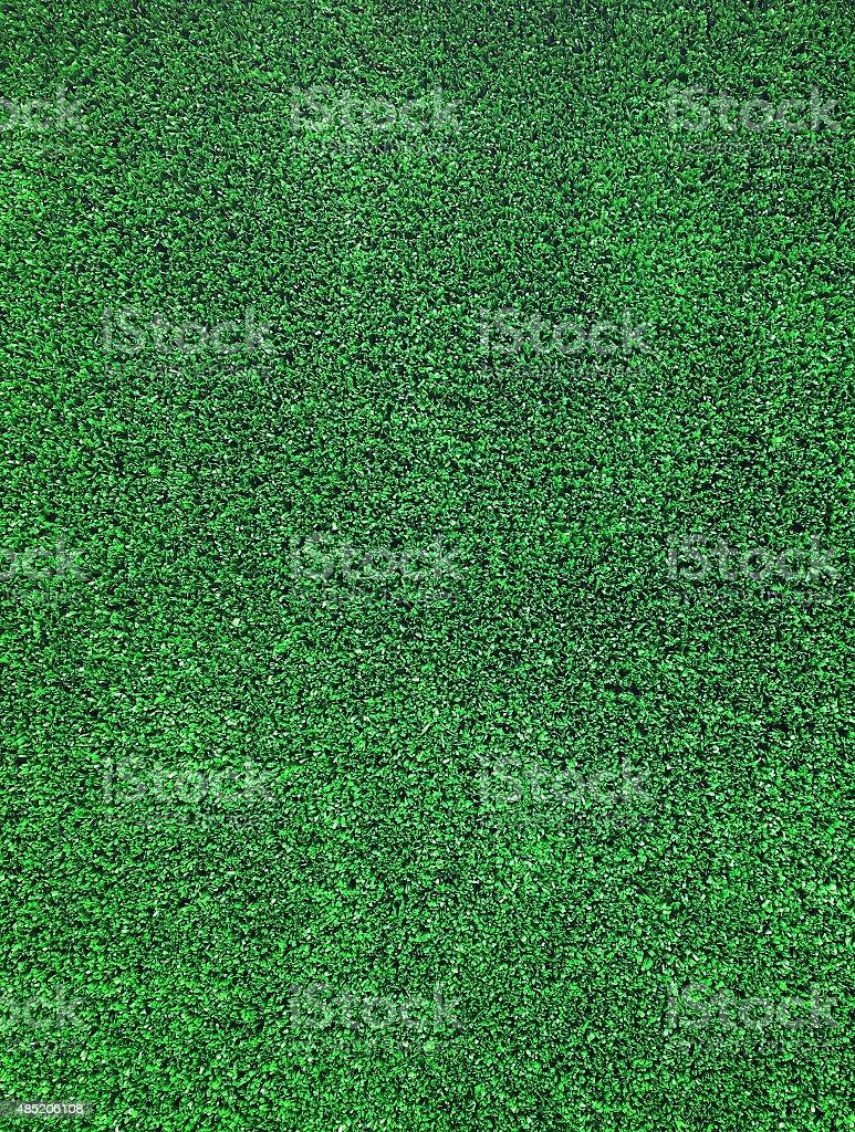 Zielona Trawa pola zbiór zdjęć royalty-free