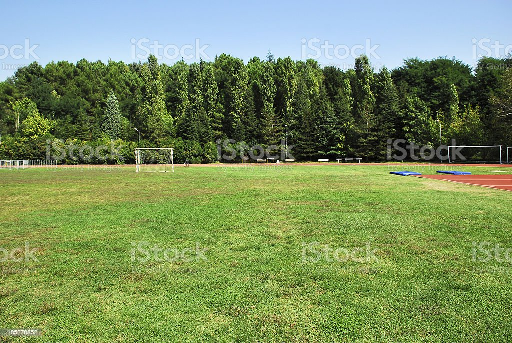Green Grass Field With Trees On Horizon royalty-free stock photo