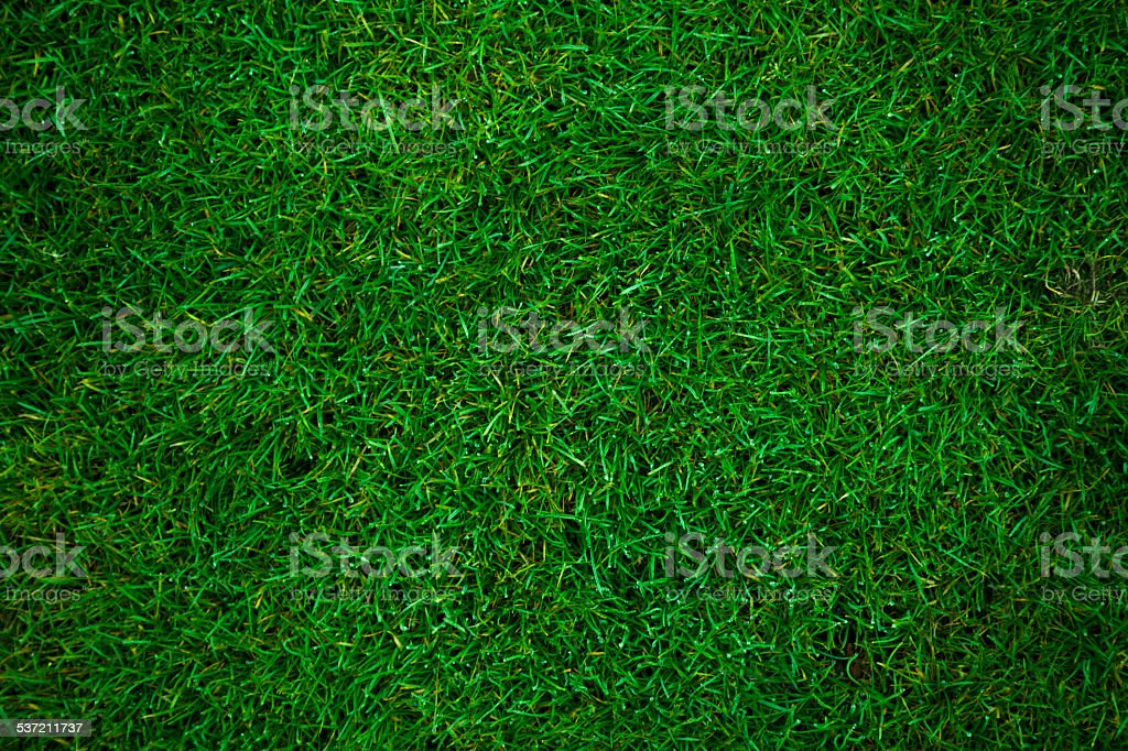 green grass football pitch stock photo