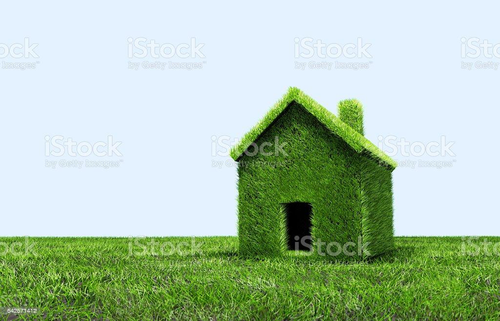 Green grass house stock photo
