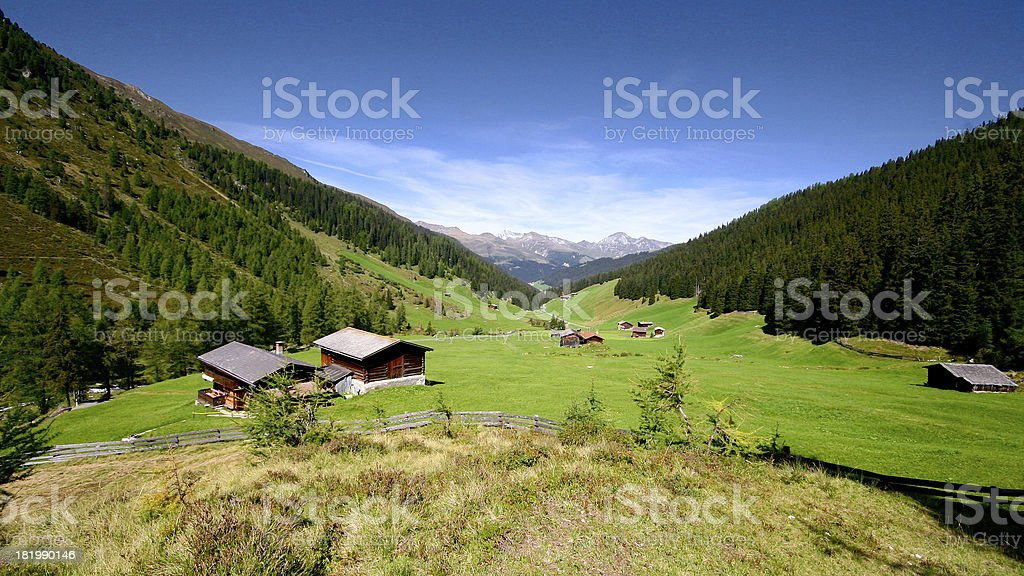 Green grass in Alpine meadow surrounded by forests and mountains. royalty-free stock photo