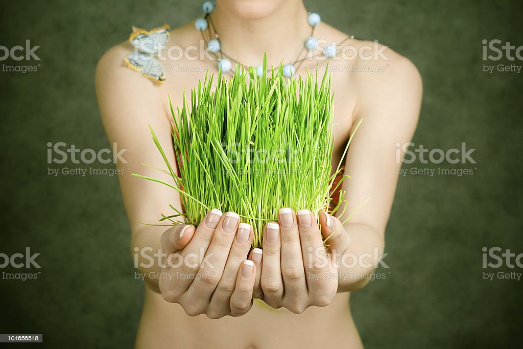 green grass in hands royalty-free stock photo