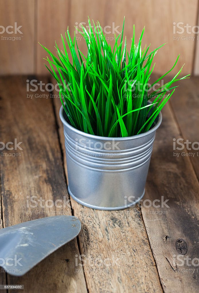 Green grass in metal pot stock photo