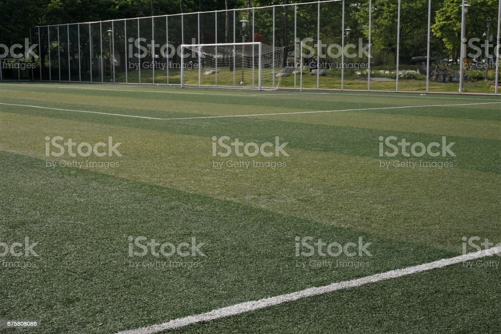 Green grass in soccer stadium stock photo