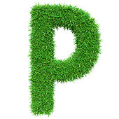 Green Grass Letter P