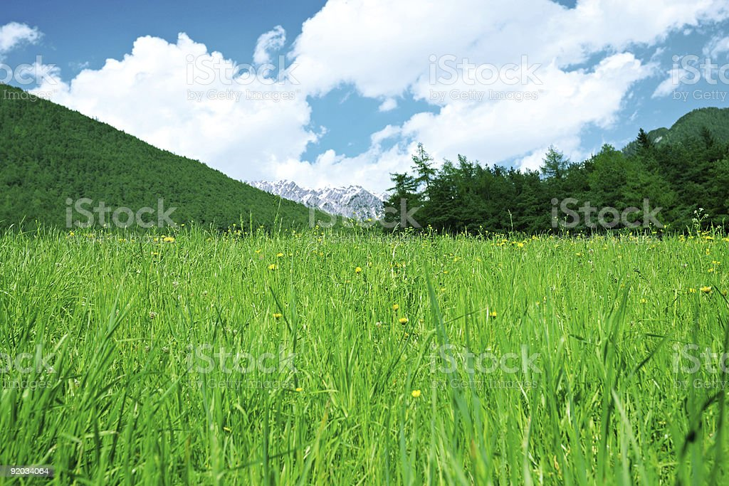 Green grass, mountains and forest below clouds. royalty-free stock photo