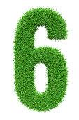 Green grass number 6