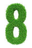 Green grass number 8