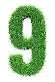 Green grass number 9