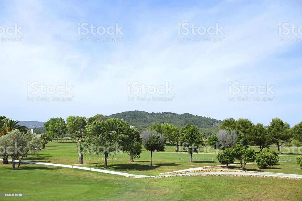 Green grass on a golf field royalty-free stock photo