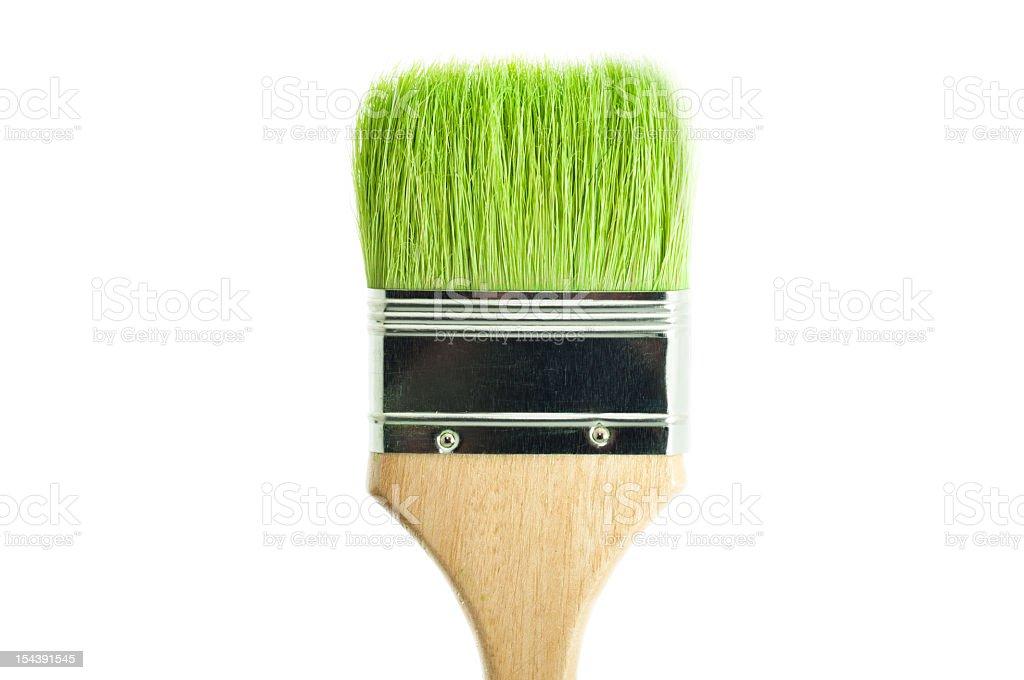 Green grass on paintbrush royalty-free stock photo