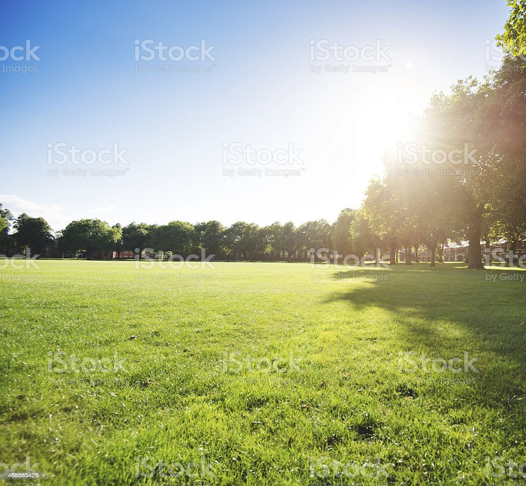 green grass park on the derbyshire stock photo