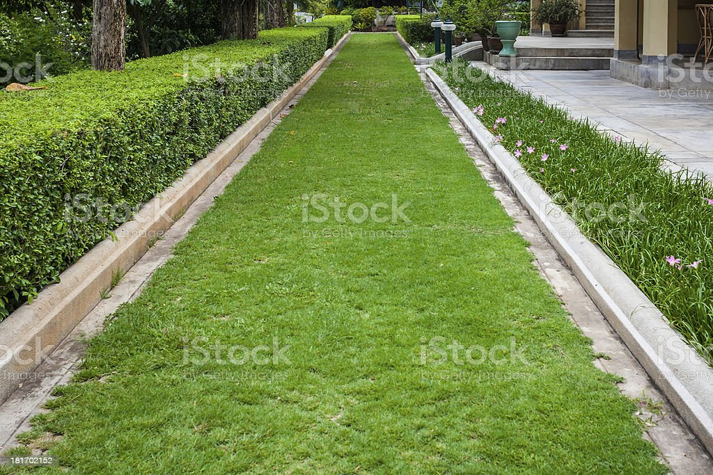 Green grass Pathway royalty-free stock photo