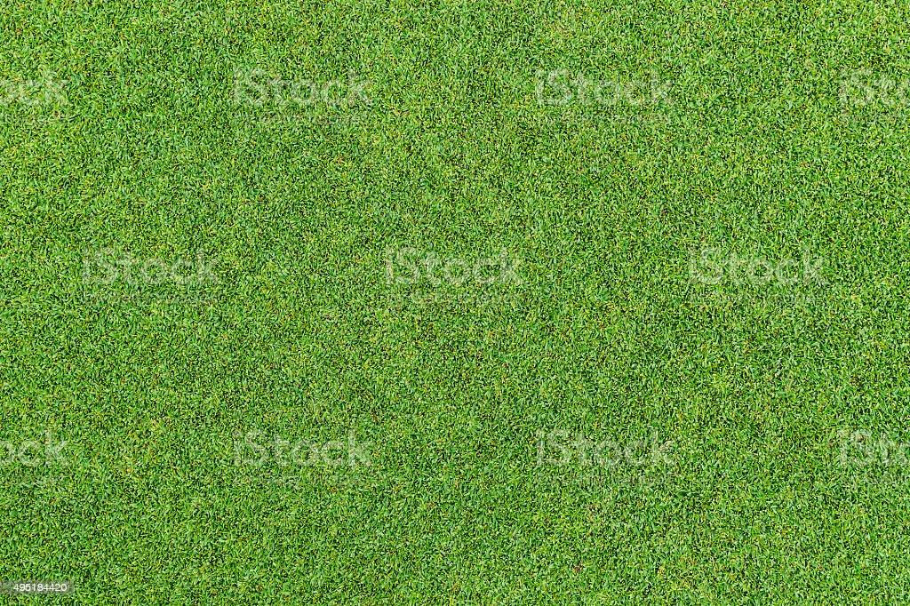 green grass pattern stock photo