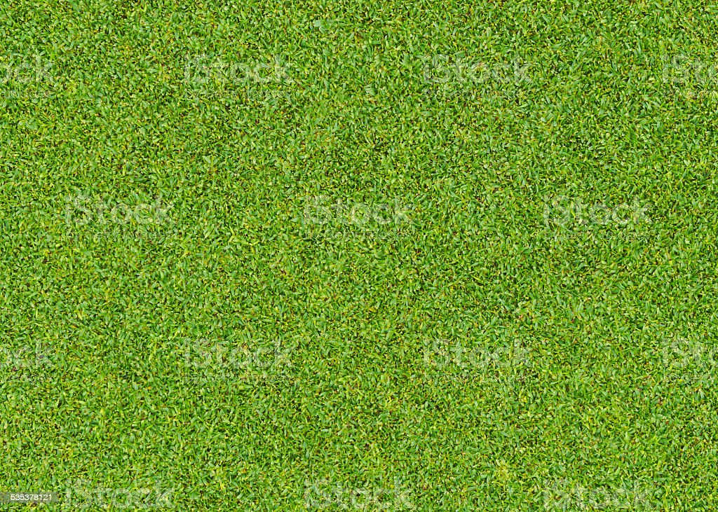 green grass pattern stock photo