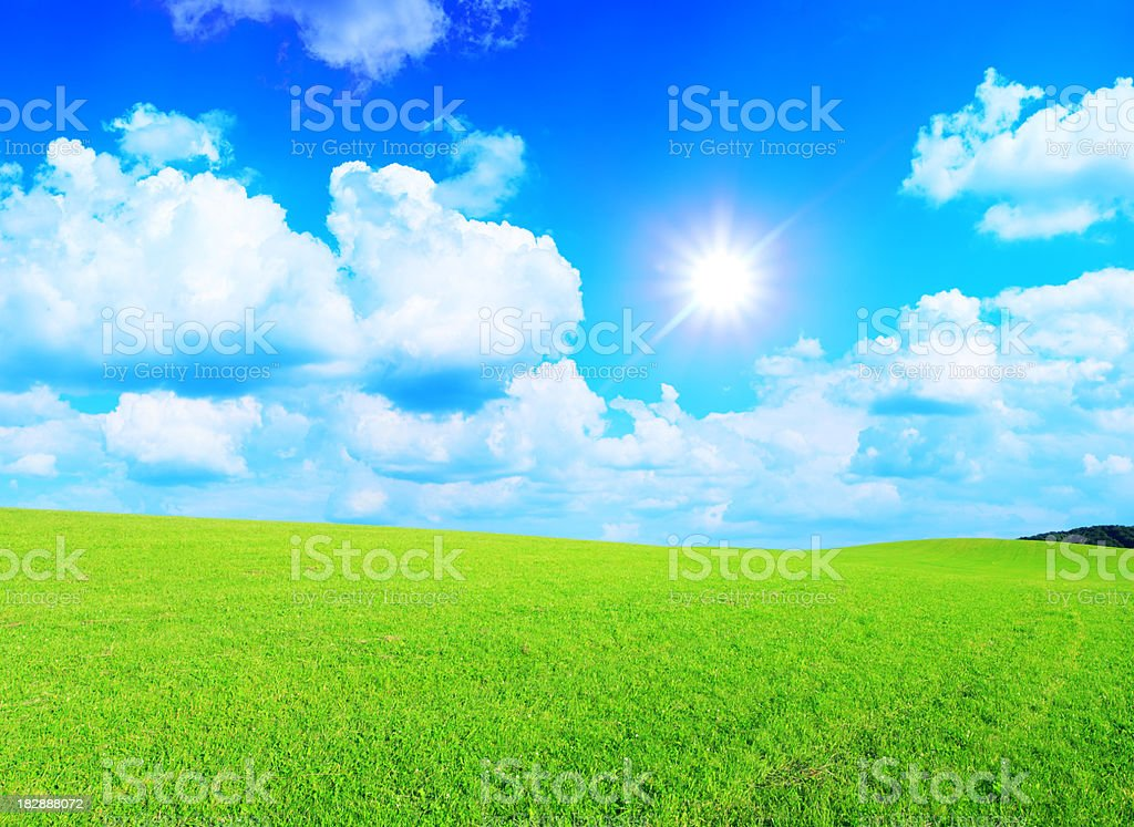 Green grass, sky and sun - XXXL landscape royalty-free stock photo