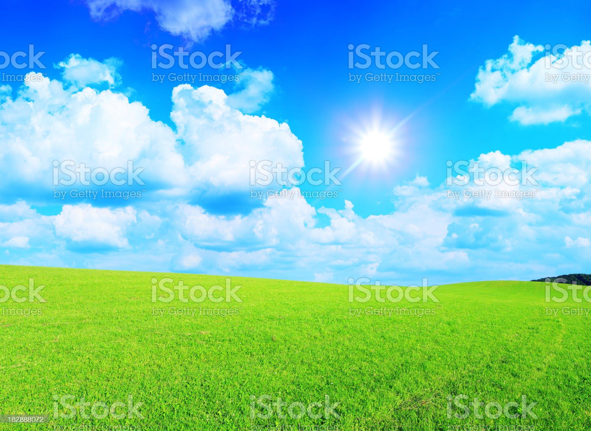 Green grass, sky and sun - XXXL landscape royalty-free stock photo