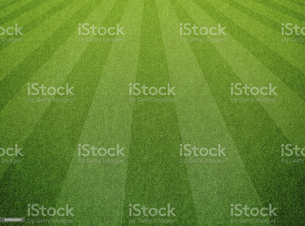Green grass soccer field background royalty-free stock photo