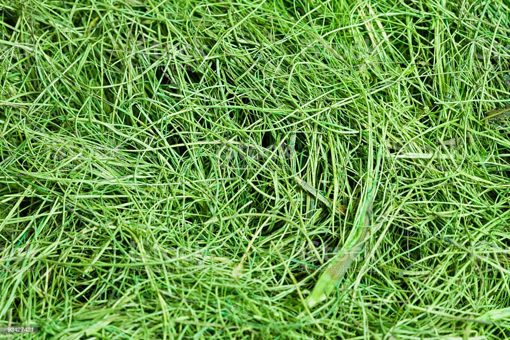 Green Grass Structure stock photo