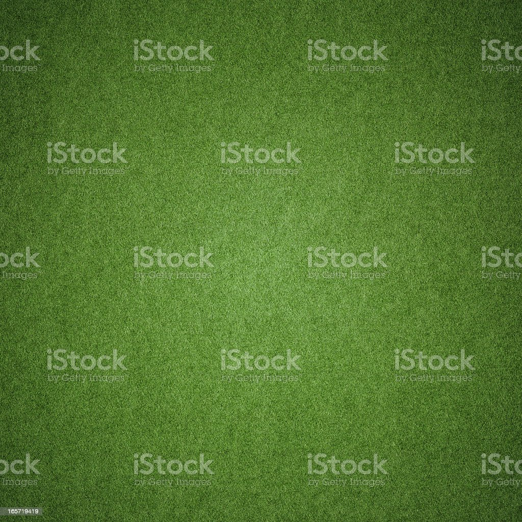 Green grass texture background (XXXL) stock photo