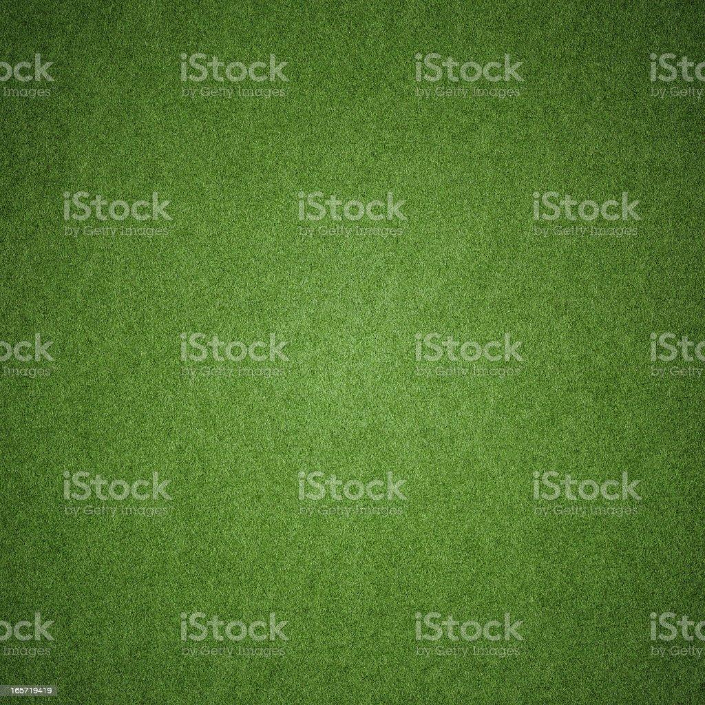 Green grass texture background (XXXL) stock photo