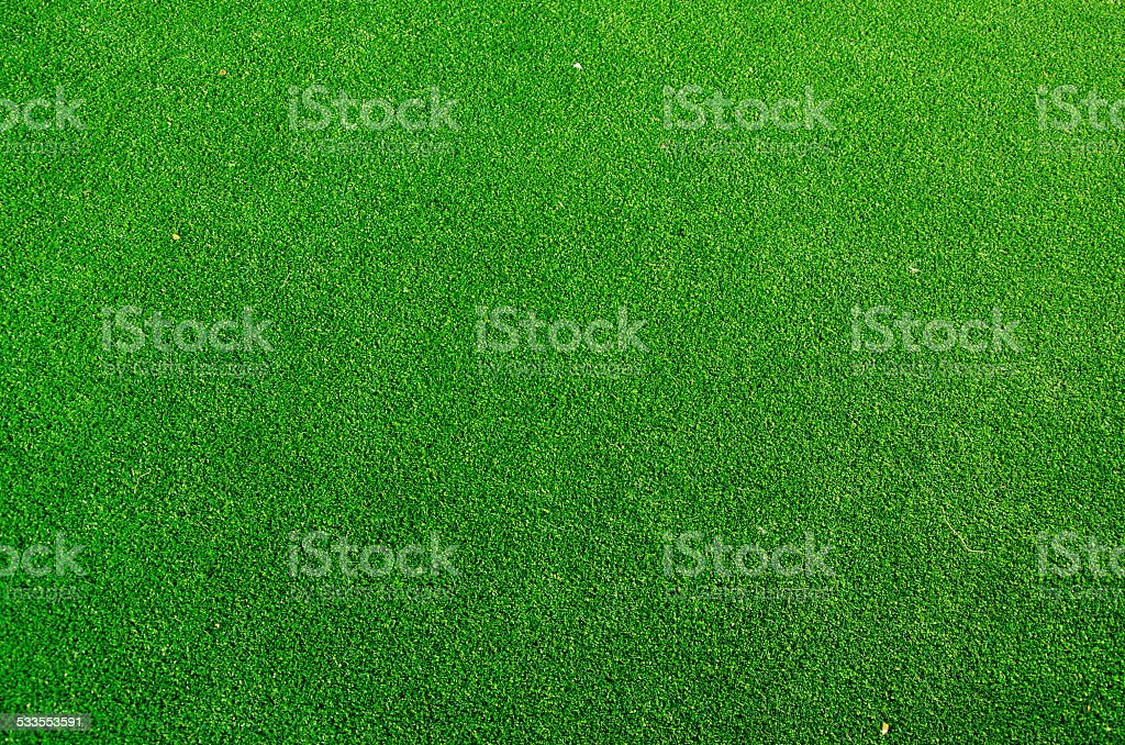 green grass texture background stock photo
