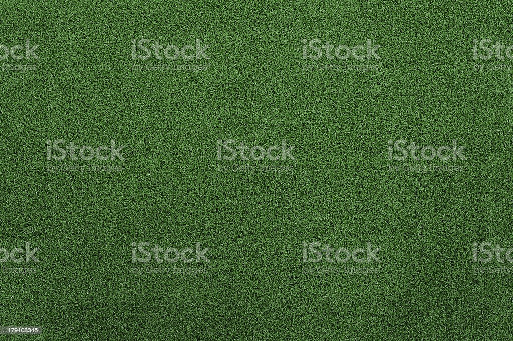 Green grass texture seamless background royalty-free stock photo