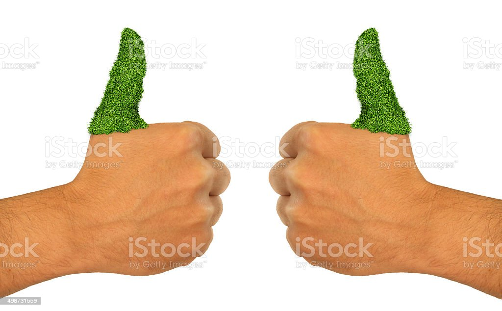 Green Grass  Thumb Up Go Green thumbs up Hand stock photo