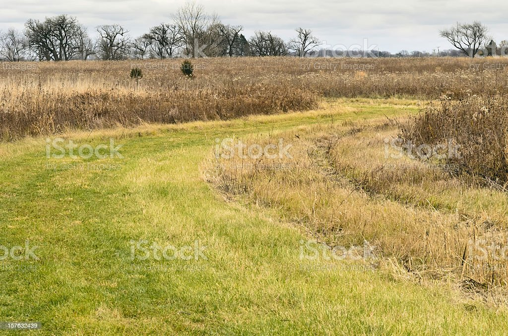 Green grass trail winding through thick brown prairie in autumn royalty-free stock photo