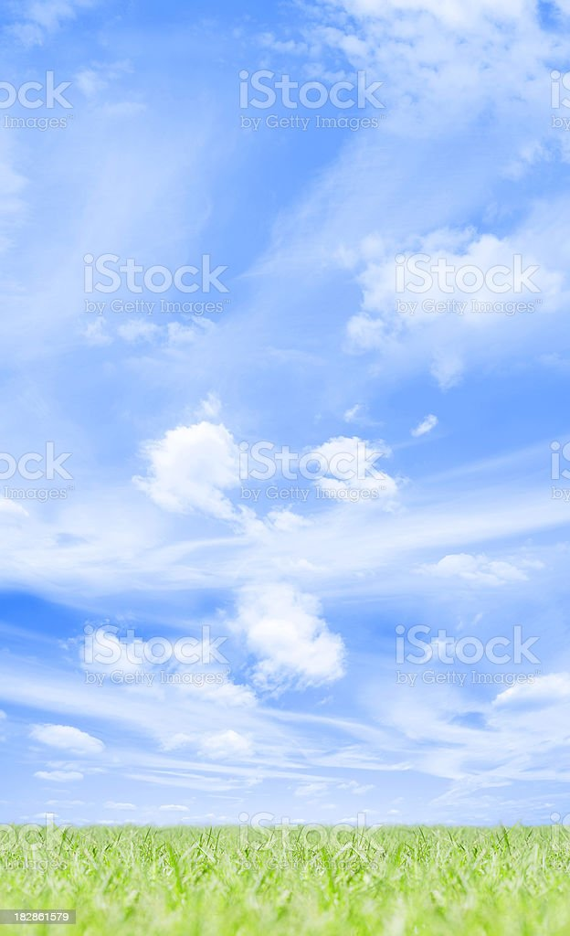 Green grass under a blue summer sky with white clouds royalty-free stock photo