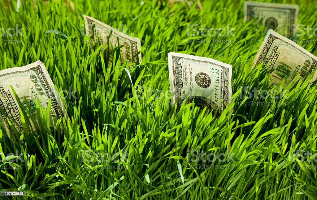 Green grass with money coming out of it royalty-free stock photo