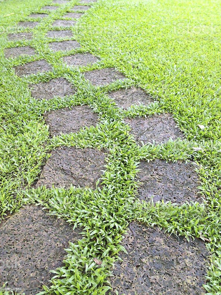 Зеленая трава с камнем тропа в сад для отдыха Стоковые фото Стоковая фотография