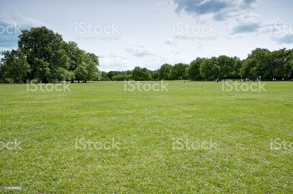 Green grass with trees and blue sky in London stock photo