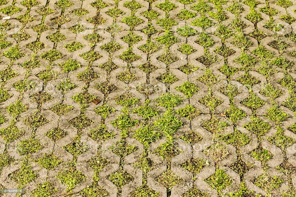 Grüne Gras in Stein Ziegel-Loch-Golfplatz Lizenzfreies stock-foto