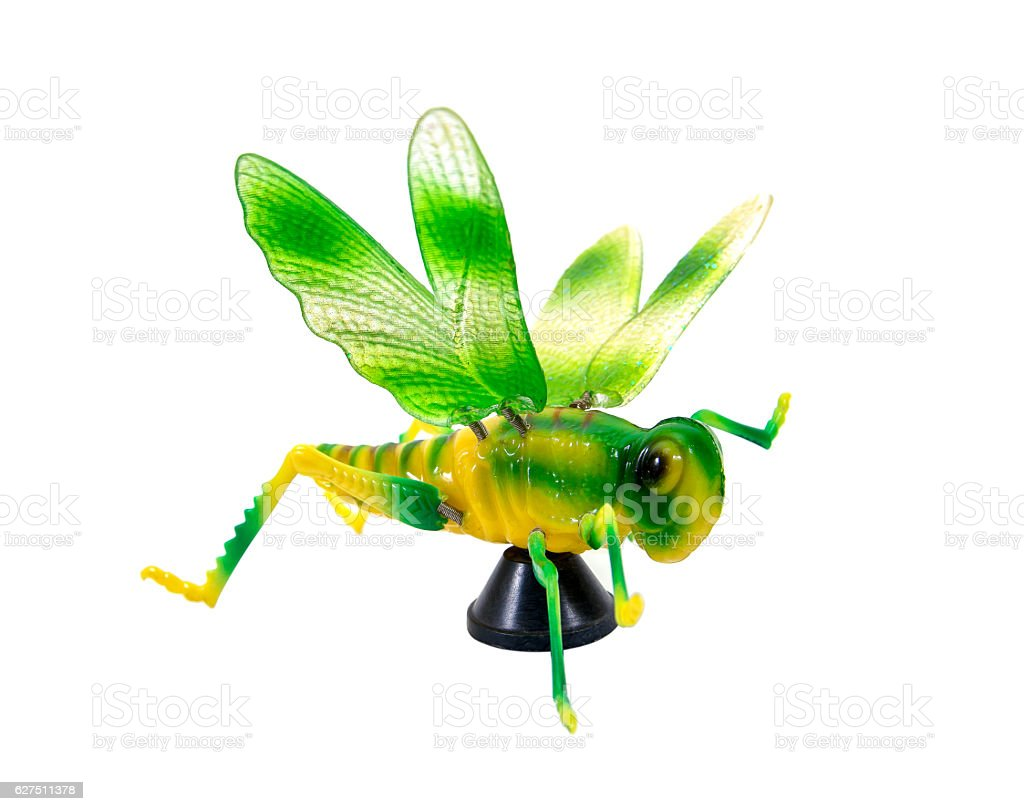Green grasshopper magnet plastic toy isolated on white background stock photo