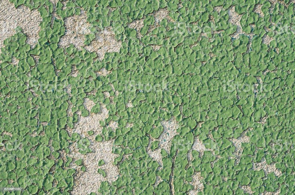 Green grunge wall texture stock photo
