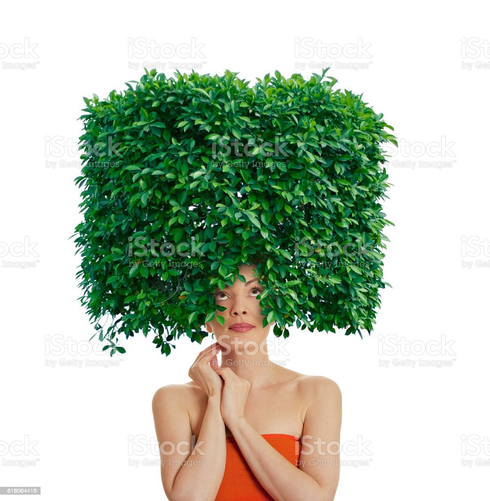 Green hairstyle stock photo