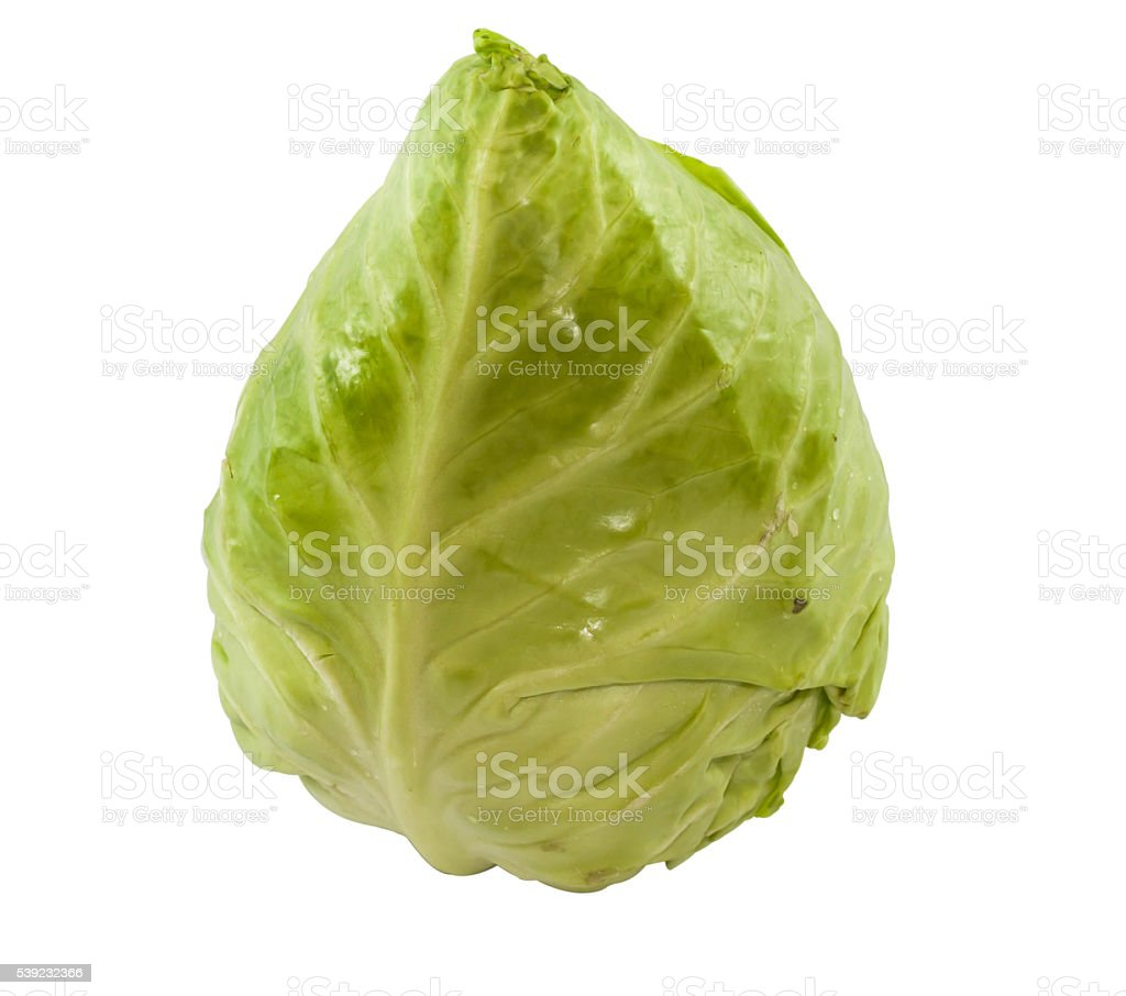 Green heart cabbage on white background stock photo