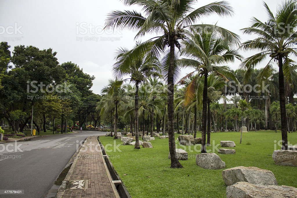 Green heart of Bangkok, Suan Lumpini Park royalty-free stock photo
