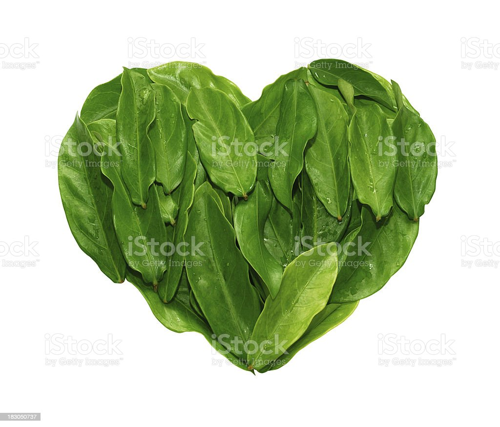 Green Heart (Clipping Paths) stock photo