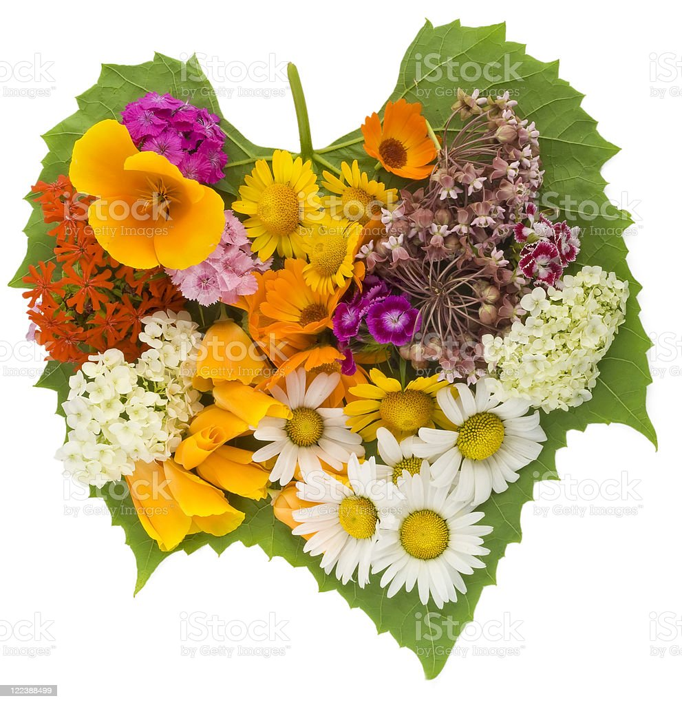 Green heart with flowers stock photo