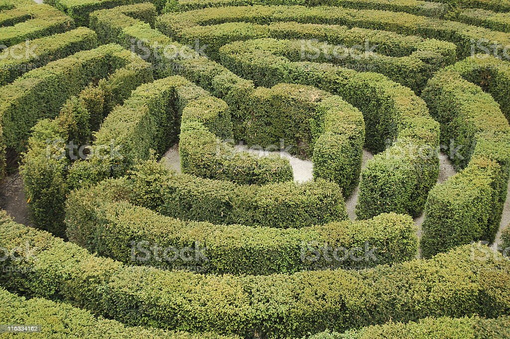 Green hedged labyrinth maze with white ground royalty-free stock photo