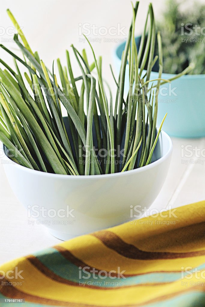 Green Herbs in Small Blue Bowl on Table royalty-free stock photo
