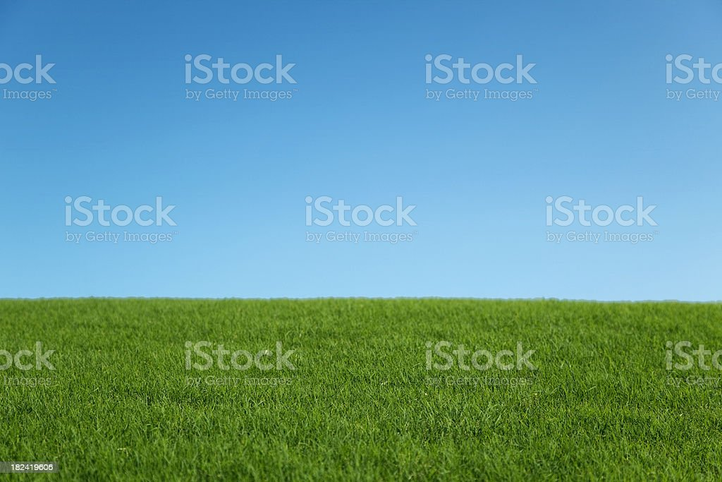 Green hill and blue sky beautiful sunny day background stock photo
