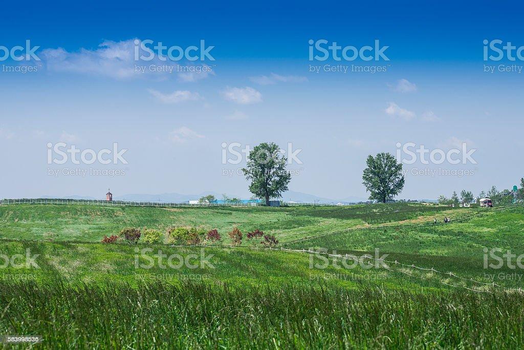 녹색 언덕 및 blue sky royalty-free 스톡 사진