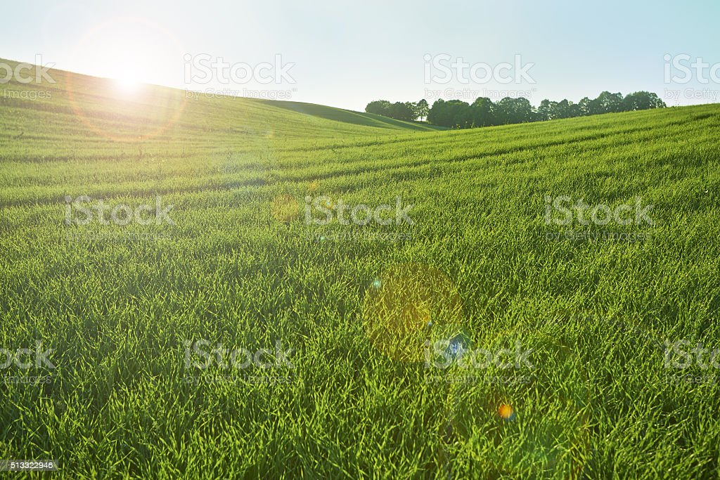Green hill and ray light stock photo