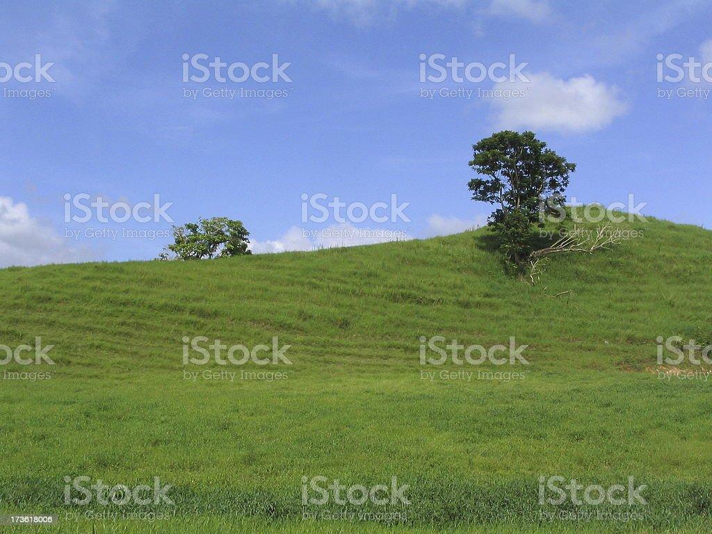 Green Hill I royalty-free stock photo