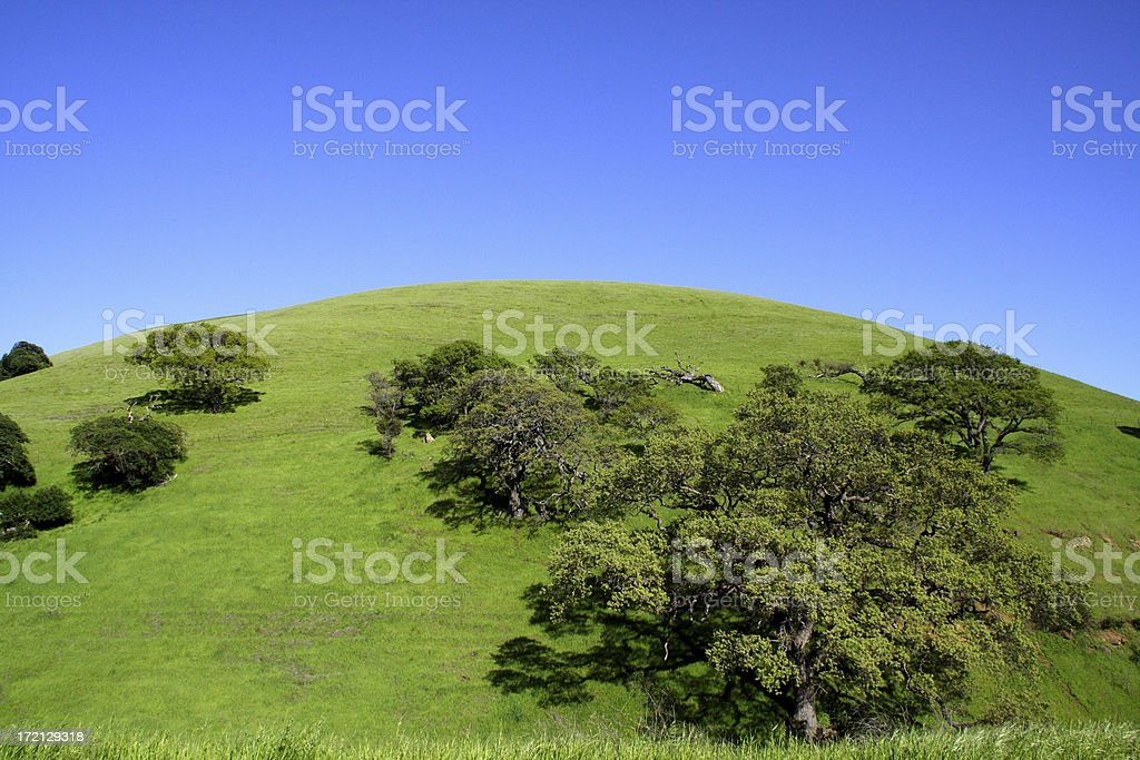 Green Hill royalty-free stock photo