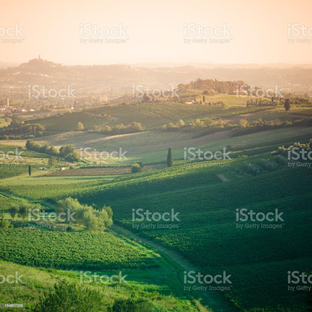 Green Hill tuscany land panorama at dusk royalty-free stock photo